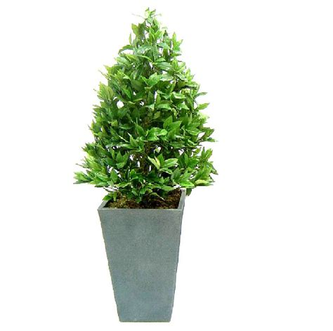 artificial bay cone topiary tree by artificial landscapes