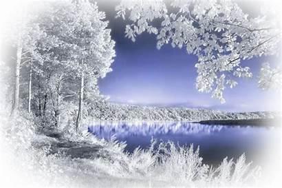 Winter Landscape Landscapes Viola
