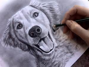 Cool Dog Drawings
