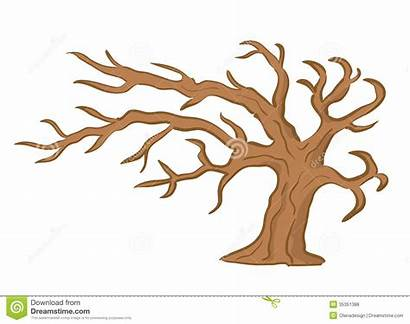 Tree Clipart Brown Vector Illustration Trunk Royalty