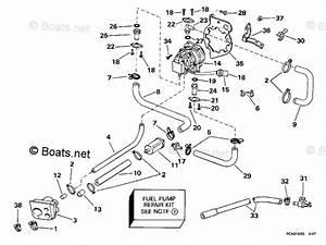 Evinrude 15 Hp Fuel Pump Diagram