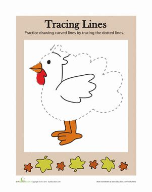 tracing lines thanksgiving worksheet education com