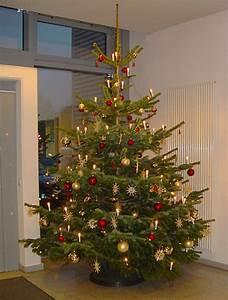 Weihnachtsbaum Entsorgen Berlin : dekorieren weihnachten akzente pflanzen design berlin ~ Lizthompson.info Haus und Dekorationen