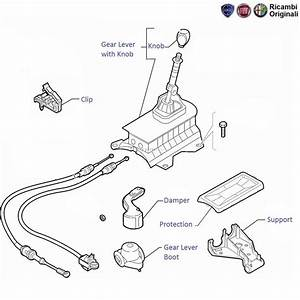 Fiat Linea 1 4 Tjet Petrol  Gear Lever  U0026 Knob