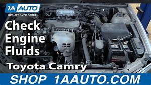 1999 Toyota Camry V6 Engine Diagram