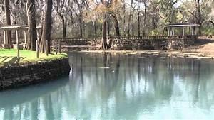 Beautiful Radium Springs In Albany  Georgia  Dougherty