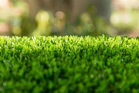 creative   artificial grass donnelly watson
