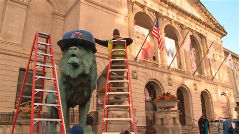 art institute lions wearing cubs hats   time