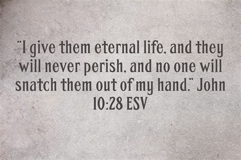 top  bible verses  read   dying michael krauszer