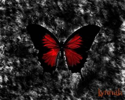 Gothic Butterfly Background Dark Backgrounds Wallpapers Crimson