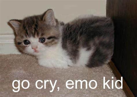 Crying Cat Meme - go cry emo kid cat meme cat planet cat planet