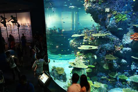 file strait of malacca and andaman sea s e a aquarium marine park resorts world sentosa