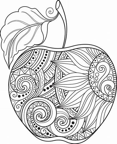Apple Abstract Vector Contour Coloring Monochrome Pages