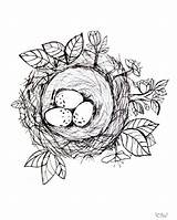 Nest Coloring Bird Jennifer Rizzo Printable Cancel Leave sketch template