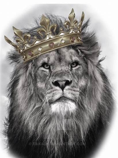Lion Tattoo King Head Tattoos Jesus Judah
