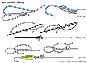 Fishing  Knots Used In Fishing