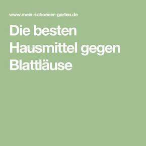 Hausmittel Gegen Spinnmilben : las 25 mejores ideas sobre blattl use en pinterest blattl use hausmittel blattl use ~ Whattoseeinmadrid.com Haus und Dekorationen