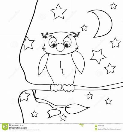 Owl Outline Night Coloring Tree