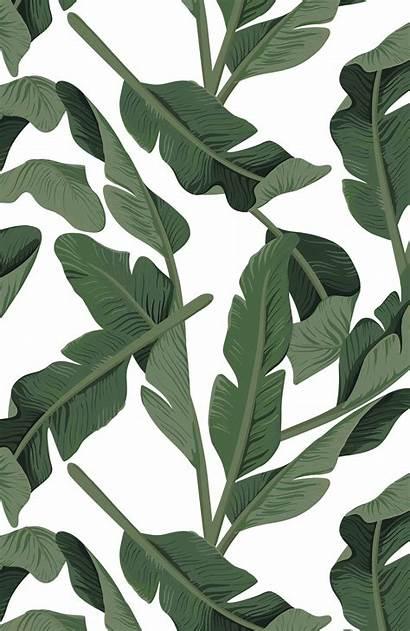Aesthetic Leaves Botanical Leaf Plant Phone Casetify