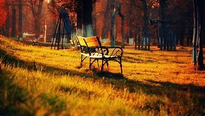Windows Wallpapers Nature Sunset Sunrise 1080p Park
