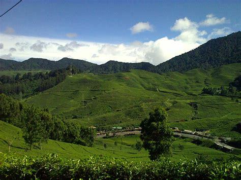 bogor puncak pass west java indonesia