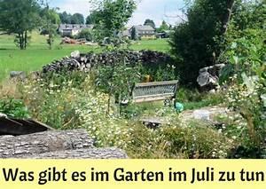 Garten Was Tun Im März : was gibt es im garten im juli zu tun haus und beet ~ Markanthonyermac.com Haus und Dekorationen