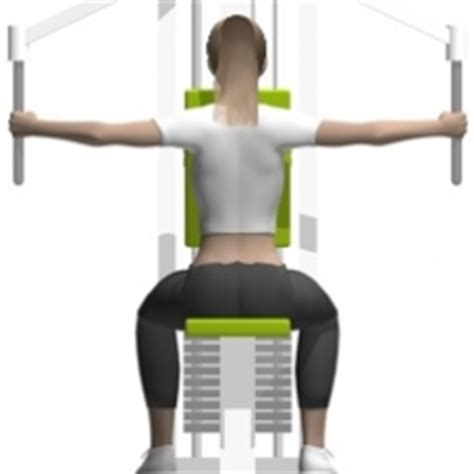 Butterfly Weight Bench