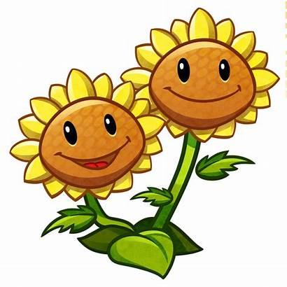 Zombies Clipart Sunflower Zombie Twin Plants Plantas