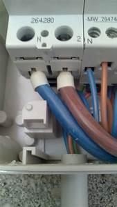 Section Cable Electrique Alimentation Maison : embout ebcp le fouet lectrique pour raccorder le ~ Premium-room.com Idées de Décoration