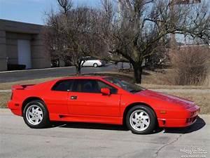 Lotus Esprit Turbo : 1990 lotus esprit turbo se for sale 30840 mcg ~ Medecine-chirurgie-esthetiques.com Avis de Voitures