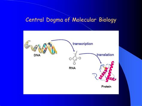 introduction  microarray gene expression  video