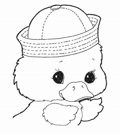 Duck Coloring Pages Toddler Momjunction Printable Cdn2