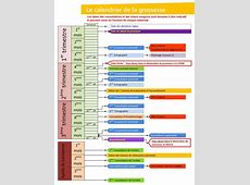 Calendrier grossesse 2019 2018 Calendar Printable with