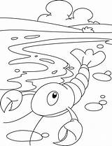 Lobster Coloring Pages Printable Sheets Larry Lobsters Spongebob sketch template