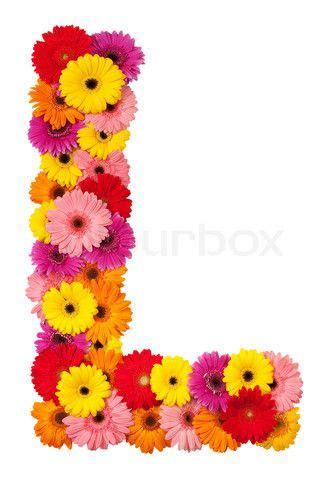 image detail  image  letter  flower alphabet isolated  white background festa