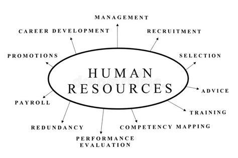 bureau des ressources humaines ressources humaines images libres de droits image 11289209