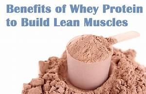 Muscle Palace  Benefits Of Whey Protein To Build Lean Muscle Mass