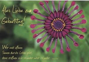 Schöne Bilder Geburtstag : sch ne geburtstagskarte alles liebe zum geburtstag blume ~ Eleganceandgraceweddings.com Haus und Dekorationen