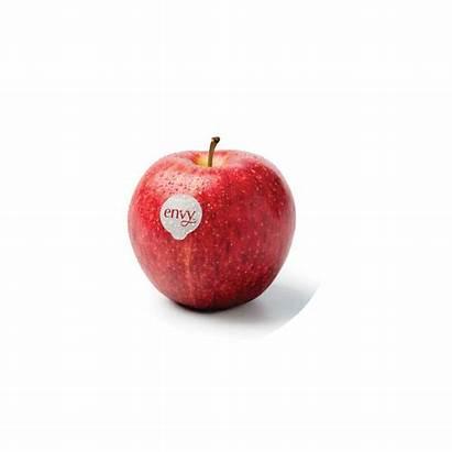 Envy Growing Circle Apples November September March
