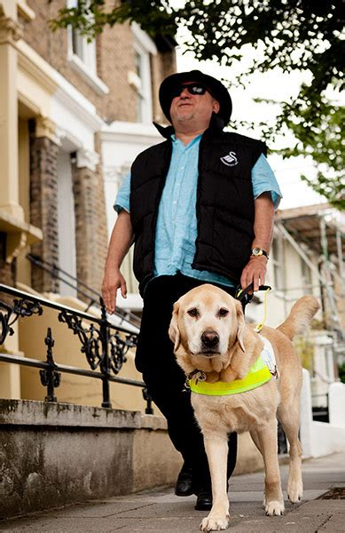 guide dogs week   pictures life  style