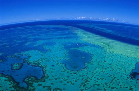 heart reef whitehaven stopover hamilton island air