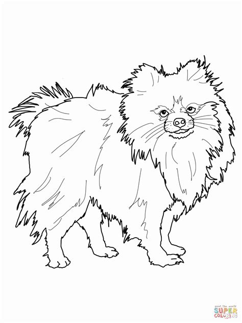 Famous Mercer Mayer Coloring Pages Pattern - Coloring Page Ideas ...