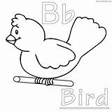 Coloring Bird Pages Cartoon Printable Detailed Birdhouse Getcolorings Getdrawings Sheets Adults Adult Colorings Letter Books Results Coloringfolder sketch template