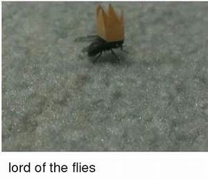 25 Best Memes About Lord Of The Flies Lord Of The Flies