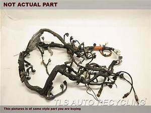 2002 Toyota Camry Engine Wire Harness - 82121-3t760