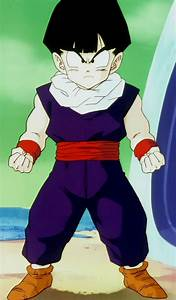 Gohan (Dragon Ball FighterZ)