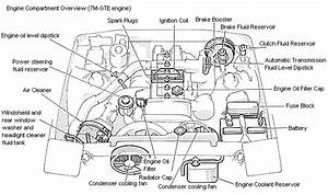 2005 Cadillac Deville Wiring Diagram