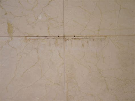 how to clean grout in marble tile shower thecarpets co