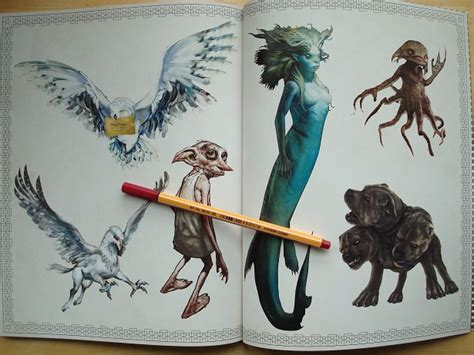 harry potter colouring book  colouring   midst