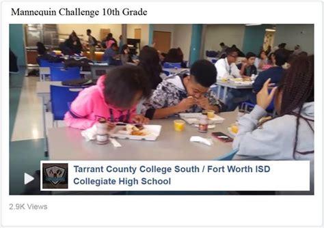 tcc southfwisd collegiate high school homepage